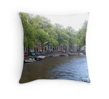 Winding Way Throw Pillow