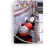 Bumpers n Ropes Canvas Print