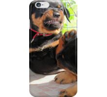 Grumpy Faced Rottweiler Puppy Lashes Out iPhone Case/Skin