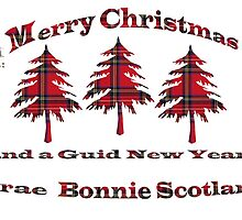 Tartan Christmas Card by simpsonvisuals