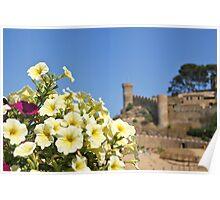Mediterranean Poster
