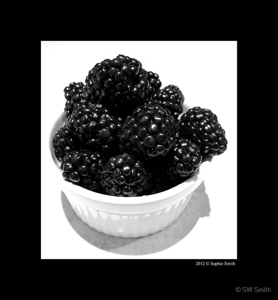 Rubus Fruticosus - Fresh Blackberries by © Sophie W. Smith