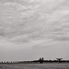 Aim for the sky- Parkes - NSW - Australia by Norman Repacholi