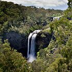 Stepping Down - Ebor Falls - NSW - Australia by Norman Repacholi