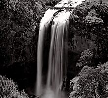 Long Drop - Ebor Falls - NSW - Australia by Norman Repacholi