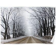frosty lane Poster