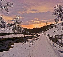New Year Eve Sunset at Clapham Ghyll by Paul Swift