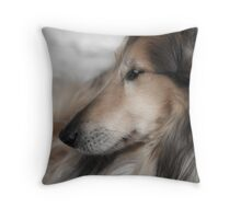 Daydreaming Collie Throw Pillow