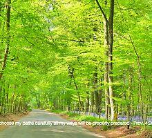 My Path by t3ck13