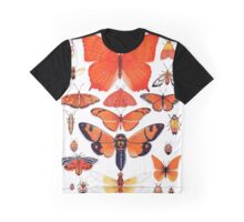 Orange Insect Collection Graphic T-Shirt