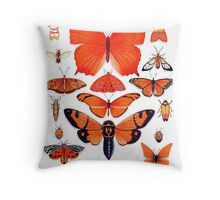 Orange Insect Collection Throw Pillow