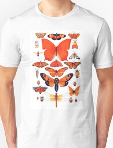 Orange Insect Collection T-Shirt