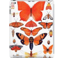 Orange Insect Collection iPad Case/Skin