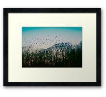 Dusk Descent Framed Print