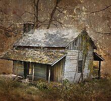 North Carolina Farmhouse by Gray Artus