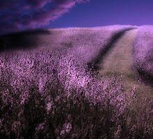 Heavens Path by GrayA