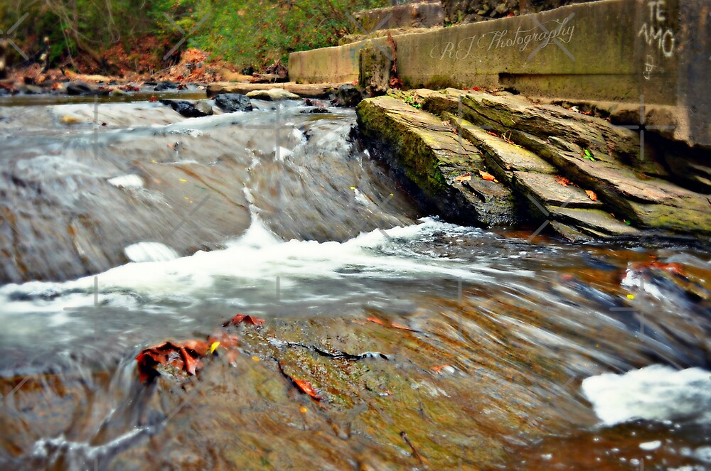 Rushing River, Te Amo by Scott Mitchell