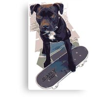 SK8 Staffy Dog Skater colour pic Canvas Print