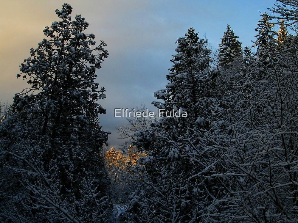 Twilight ! by Elfriede Fulda