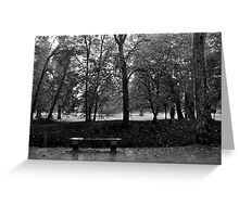 Lonely bench at Chenonceau  Greeting Card