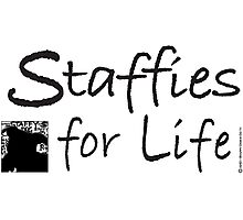 Staffies For Life Photographic Print