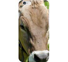 Swiss Cow iPhone Case/Skin