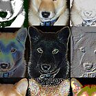 Shades of Shiba by fitch