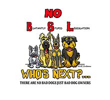 Blatantly Stupid Legislation (BSL) Photographic Print