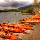 Wooden boats waiting at Keswick, Lake District, UK by Elana Bailey
