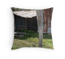 Battered old barn Throw Pillow