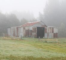 Old barn in the mist by Fran Woods