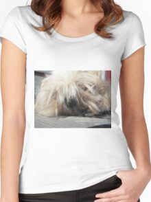 the king shih tzu Women's Fitted Scoop T-Shirt
