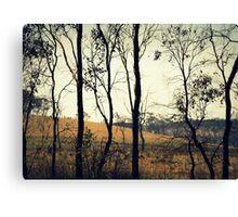 Gostwyck Canvas Print