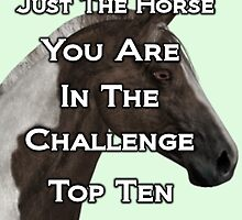 Just the Horse .. Top Ten by LoneAngel