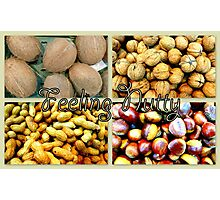 Feeling Nutty Photographic Print