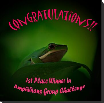 Amphibians Avatar Challenge by Sea-Change