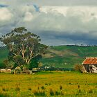RUSTY OLD SHED by Matthew Burniston