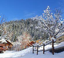 Morel Ski Lift by OOSweet