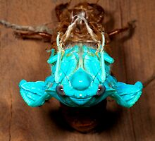 Gem in the night  - Green Grocer Cicada -  Transformation by john  Lenagan