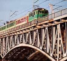 Train on a Bridge by Artur Bogacki