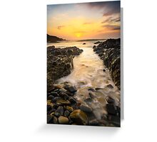 """""""A Moment of Clarity"""" ∞ Noosa Heads N.P, QLD - Australia Greeting Card"""