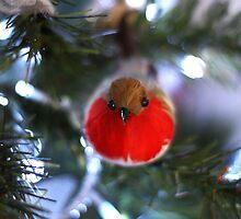 Christmas Robin by Lynn Ede