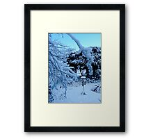 Ted and Clare's Garden... Framed Print