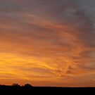 Wind Swept Sunset Clouds by barnsis