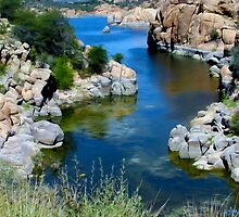 Watson Lake From Peavine Trail by Paul Ewing