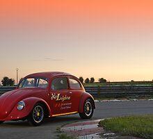 Beetle # 9 by Stefan Bau