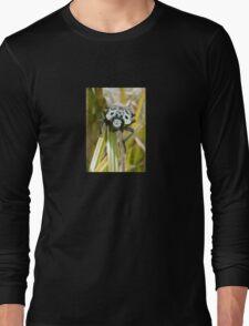 Capnodis Cariosa (Chrysochroinae) T-Shirt