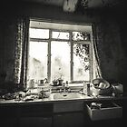 Everything and the Kitchen Sink by birdinanaviary