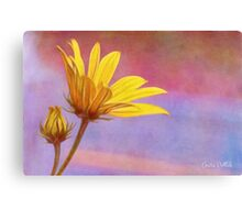 Painted Swamp Sunflower and Bud Along the Fence Canvas Print