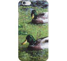 three mallard ducks in pond iPhone Case/Skin